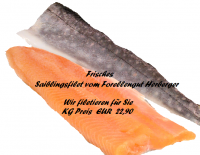 Frisches Saiblingsfilet